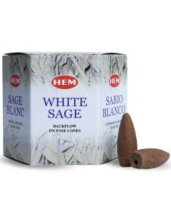 Hem Backflow Kegelwierook Witte Salie