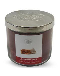 Geurkaars Cinnamon Spice 400gr.