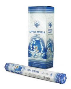 Wierook Little Angels 120st.