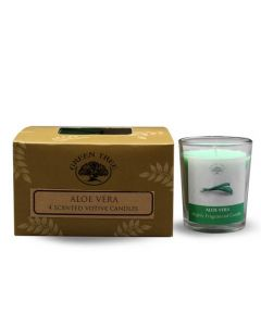 Green Tree Aloe Vera Candle 55 grams